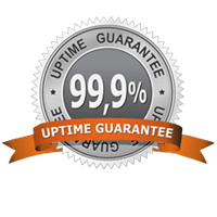 99.9% Uptime On All Of Our Servers
